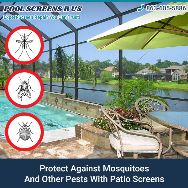 Patio Screen Repair Tampa: Protect Against Mosquitoes And Other Pests With Patio